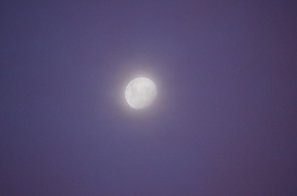Haze moon on an evening blue sky
